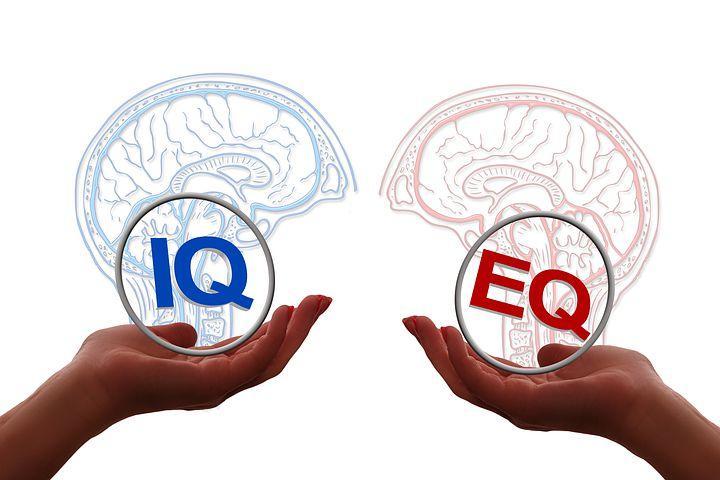 Emotional Intelligence Vs IQ