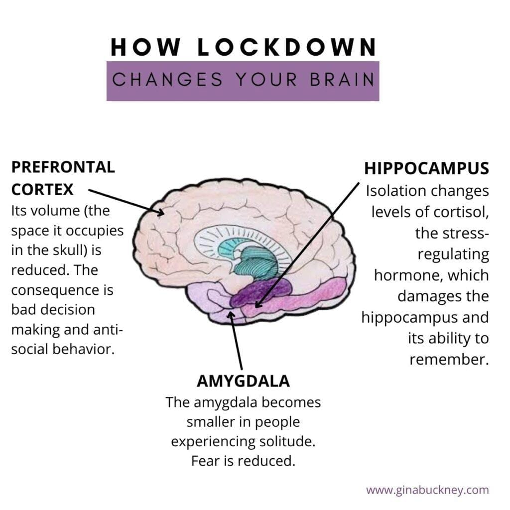 How Lockdown has affected stress